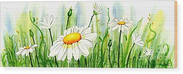 Daisy Field Wood Print by Annie Troe