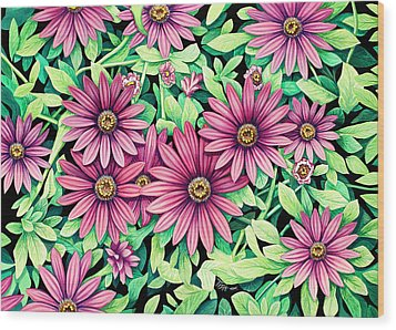Daisy Flowers Wood Print by Tish Wynne