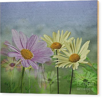 Wood Print featuring the digital art Daisy Garden by Shirley Mangini