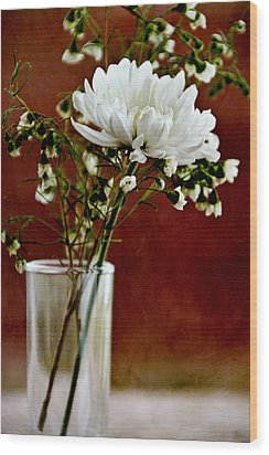 Daisy Mum On Red 3 Wood Print by Angelina Vick