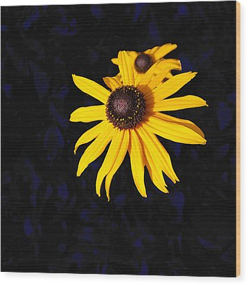 Daisy On Dark Blue Wood Print