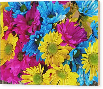 Wood Print featuring the photograph Daisys Flowers Bloom Colorful Petals Nature by Paul Fearn