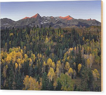 Dallas Divide Wood Print