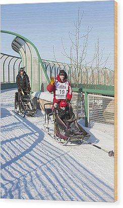 Dallas Seavey Iditarod Champ Wood Print by Tim Grams