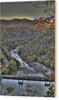 Wood Print featuring the photograph Dam In The Forest by Jonny D