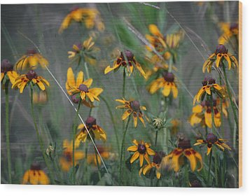 Wood Print featuring the photograph Dance Of Flowers by Susan D Moody