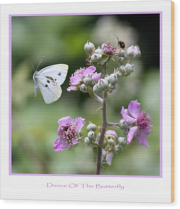 Dance Of The Butterfly Wood Print by Martina  Rathgens