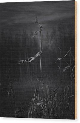 Dance Of The Corn Wood Print
