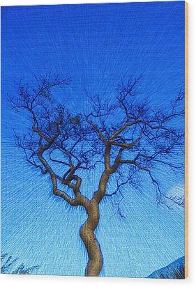Dance Of The Dawn Wood Print