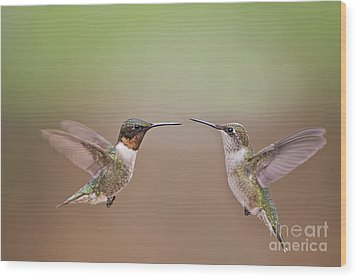Dance Of The Hummingbirds Wood Print