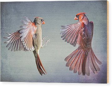 Dance Of The Redbirds Wood Print