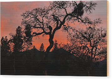 Wood Print featuring the photograph Dance With Me by Julia Hassett