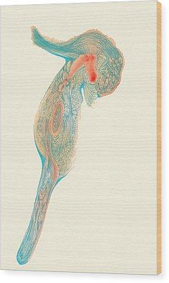 Dancer- #ss14dw017 Wood Print by Satomi Sugimoto