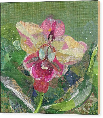 Dancing Orchid I Wood Print by Shadia Derbyshire