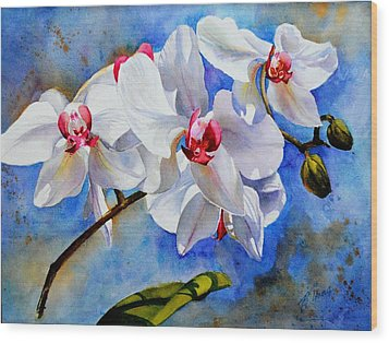 Dancing Orchids Wood Print by Betty M M   Wong