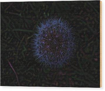 Dandelion Fireworks Wood Print