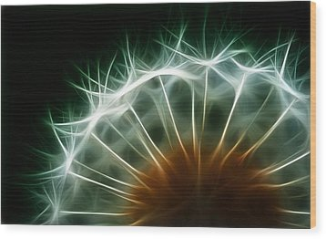 Dandelion Wood Print by ISAW Gallery