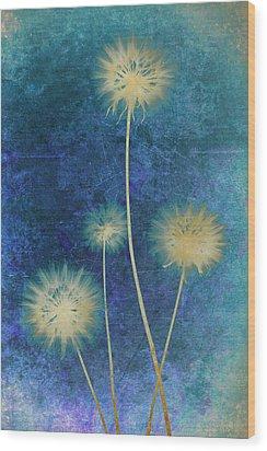Dandelions Wood Print by Nicole Neuefeind