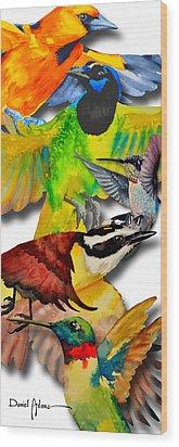 Da131 Multi-birds By Daniel Adams Wood Print