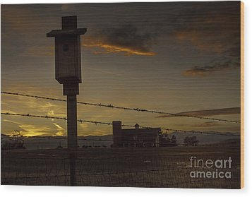 Wood Print featuring the photograph Daniel's Dusk by Kristal Kraft
