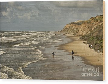 Danish Beach In North Jutland Wood Print