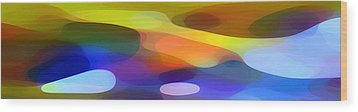 Dappled Light Panoramic 1 Wood Print by Amy Vangsgard