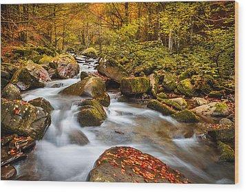 Dardagna River Wood Print
