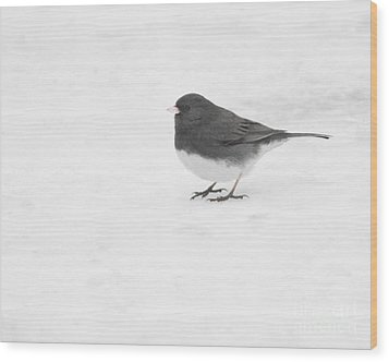 Wood Print featuring the photograph Dark-eyed Junco In Winter by Anita Oakley