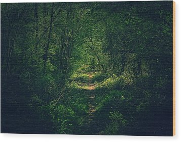 Dark Forest Wood Print by Daniel Precht