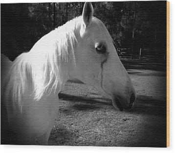 Dark Horse 2 Wood Print by Chasity Johnson