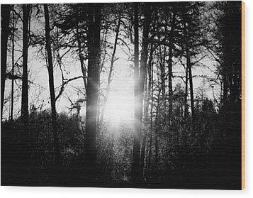 Dark Nature Wood Print by Robert Hellstrom