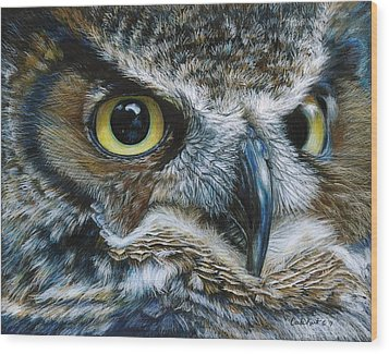 Dark Owl Wood Print