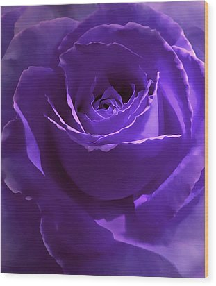 Dark Secrets Purple Rose Wood Print by Jennie Marie Schell