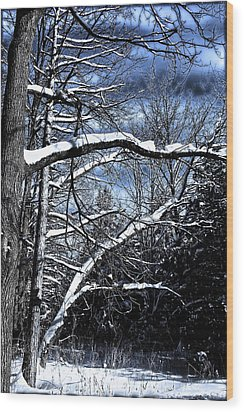 Wood Print featuring the photograph Dark Sky by Michaela Preston