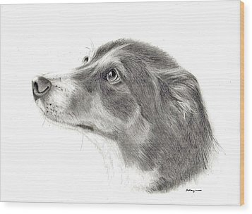 Dash Wood Print by Mary Mayes