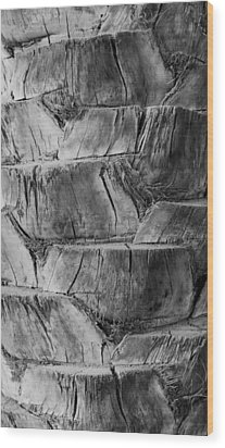 Date Palm Bark Wood Print