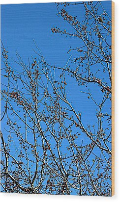 Dave's Blue Sky Wood Print by Joseph Yarbrough