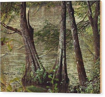 Davids River Wood Print by Linda Cox