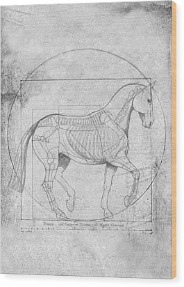 Da Vinci Horse Piaffe Grayscale Wood Print by Catherine Twomey