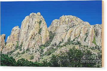 Davis Mountains Of S W Texas Wood Print