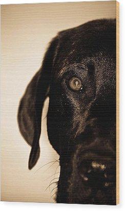 Dawg Wood Print by Jamie Bishop