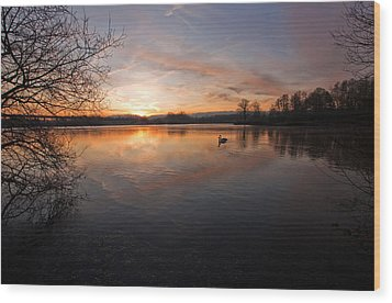 Dawn At Haysden Wood Print