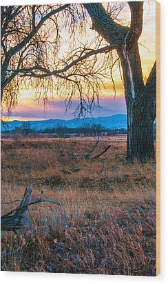 Setting Sun At Rocky Mountain Arsenal Wood Print by Tom Potter