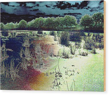 Dawn Breaking On South Florida Marshland Wood Print