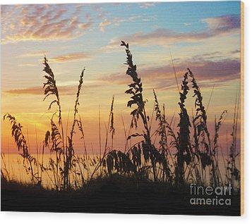 Dawn Wood Print by Megan Dirsa-DuBois