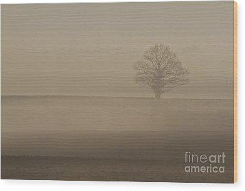 Wood Print featuring the photograph Dawn Mist  by Gary Bridger