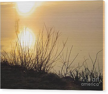 Wood Print featuring the photograph Dawn Of A New Day by Robyn King