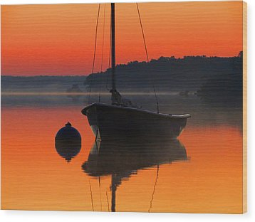 Wood Print featuring the photograph Dawn's Light by Dianne Cowen