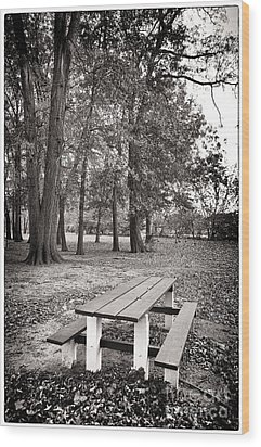 Day At The Park Wood Print by John Rizzuto