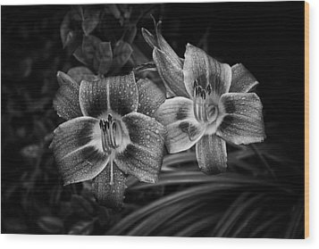 Day Lilies Number 4 Wood Print